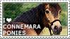 I love Connemara Ponies by WishmasterAlchemist