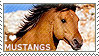 I love Mustangs