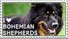 I love Bohemian Shepherds by WishmasterAlchemist