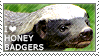 I love Honey Badgers by WishmasterAlchemist