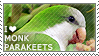 I love Monk Parakeets