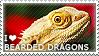 I love Bearded Dragons