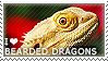 I love Bearded Dragons by WishmasterAlchemist