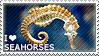I love Seahorses by WishmasterAlchemist