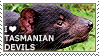 I love Tasmanian Devils by WishmasterAlchemist
