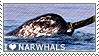 I love Narwhals by WishmasterAlchemist