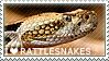 I love Rattlesnakes by WishmasterAlchemist