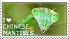 I love Chinese Mantises by WishmasterAlchemist