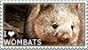 I love Wombats by WishmasterAlchemist