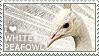 I love White Peafowl by WishmasterAlchemist