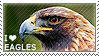 I love Eagles by WishmasterAlchemist