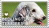 I love Bedlington Terriers by WishmasterAlchemist
