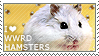 I love Winter White Russian Dwarf Hamsters by WishmasterAlchemist