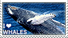 I love Whales by WishmasterAlchemist