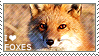 I love Foxes by WishmasterAlchemist
