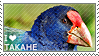 I love Takahe by WishmasterAlchemist