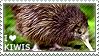 I love Kiwis by WishmasterAlchemist