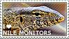 I love Nile Monitors by WishmasterAlchemist