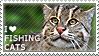 I love Fishing Cats by WishmasterAlchemist