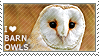 I love Barn Owls