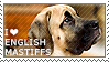 I love English Mastiffs by WishmasterAlchemist