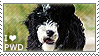 I love Portuguese Water Dogs by WishmasterAlchemist