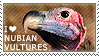 I love Nubian Vultures by WishmasterAlchemist