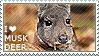 I love Musk Deer by WishmasterAlchemist