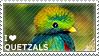I love Quetzals
