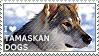 I love Tamaskan Dogs