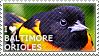 I love Baltimore Orioles by WishmasterAlchemist