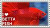 I love Betta Fish