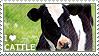 I love Cattle