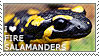 I love Fire Salamanders