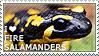 I love Fire Salamanders by WishmasterAlchemist