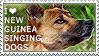I love New Guinea Singing Dogs by WishmasterAlchemist