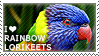 I love Rainbow Lorikeets by WishmasterAlchemist