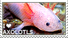 I love Axolotls by WishmasterAlchemist