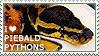 I love Piebald Pythons by WishmasterAlchemist