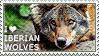 I love Iberian Wolves