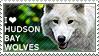 I love Hudson Bay Wolves by WishmasterAlchemist