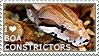 I love Boa Constrictors by WishmasterAlchemist