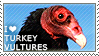 I love Turkey Vultures