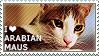 I love Arabian Maus by WishmasterAlchemist