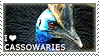 I love Cassowaries by WishmasterAlchemist