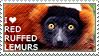 I love Red Ruffed Lemurs by WishmasterAlchemist