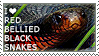 I love Red-bellied Black Snakes by WishmasterAlchemist