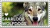 I love Saarloos Wolfdogs