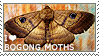 I love Bogong Moths by WishmasterAlchemist