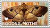 I love Bogong Moths by WishmasterAlchemist